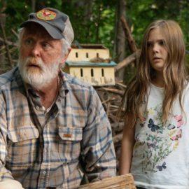 """Stephen King comentou sobre a mudança """"polêmica"""" no remake de 'Cemitério Maldito'"""