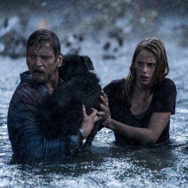 Atriz de 'Maze Runner' estrela filme de terror 'Crawl' do diretor Alexandre Aja